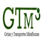 GRUAS Y TRANSPORTES MIRALBUENO S.L.