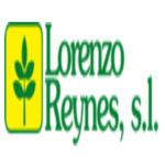 LORENZO REYNES S.L.
