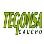 TEGONSA – TEODORO GONZALEZ, S.A.