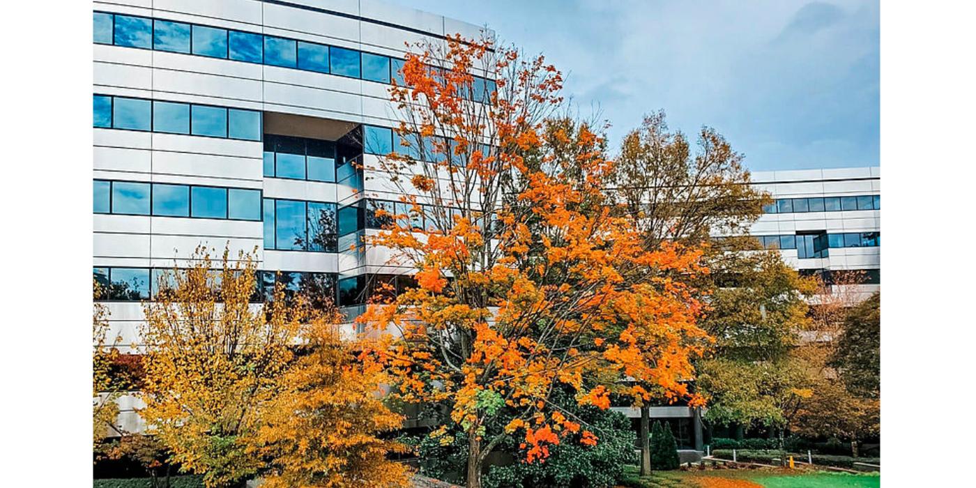 InfraTec abre una segunda sucursal en EE. UU.